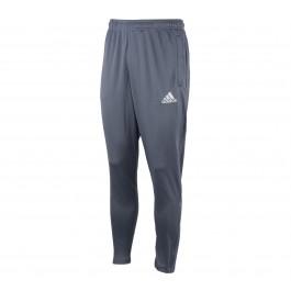 Adidas Core F Trg PNT grijs