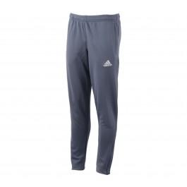 Adidas Core F Trg PN Y grijs