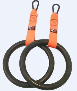 Lifemaxx PT4Pro Training Ring Set
