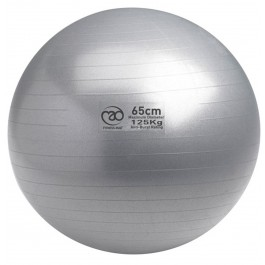 Mad 125kg Anti-Burst Swiss Ball 65cm zilver