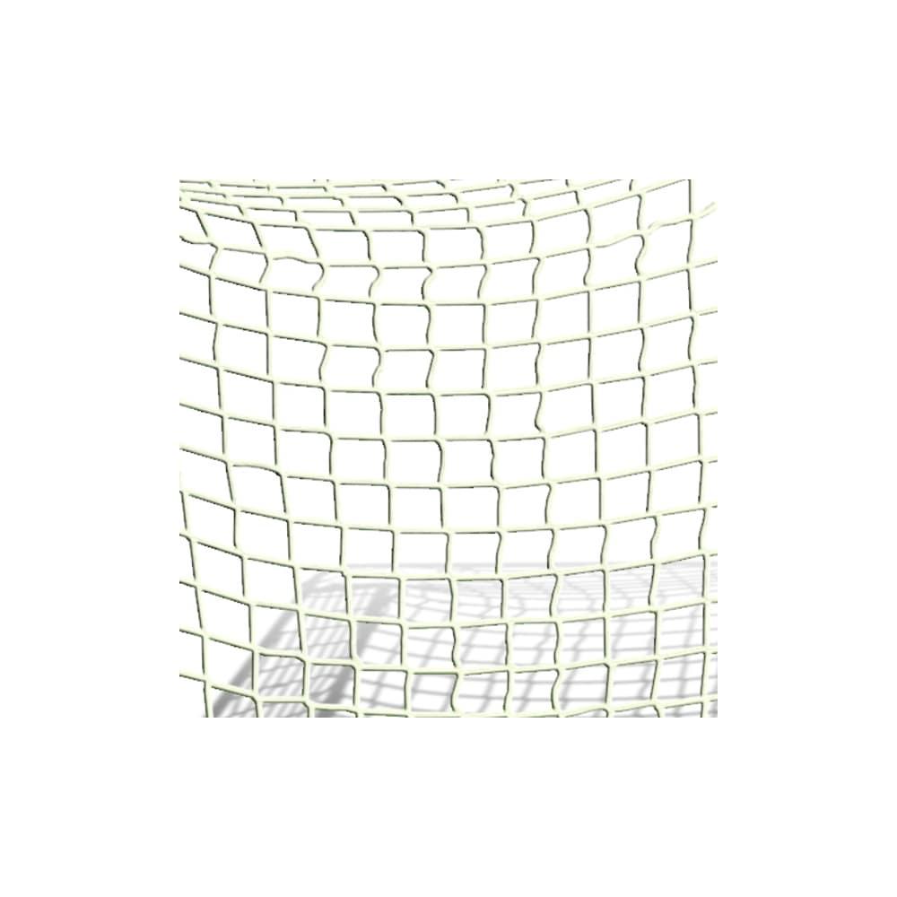 Etan Veiligheidsnet voor Voetbalgoal ESB