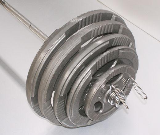 MP Gietijzer schijf 25 kg (50 mm)