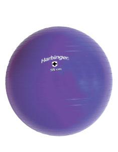 Harbinger Fitness bal 55 cm