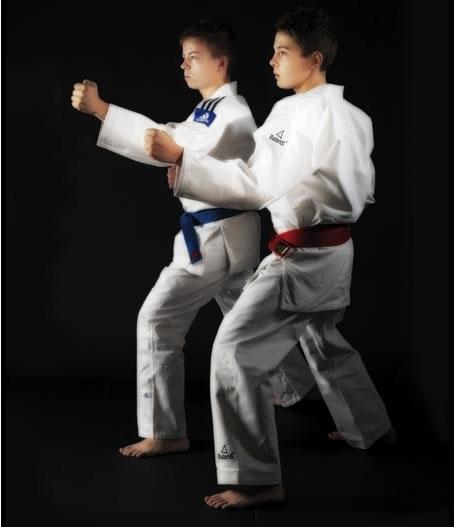 Nihon  Jiujitsupak Fighting
