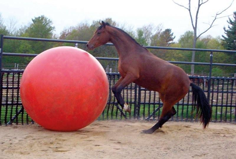 Gymnic Mega Bal / Paardenvoetbal 150 cm